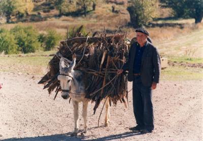 Joaquín Gracia, antiguo pastor de Plenas